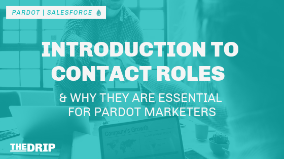 Introduction To Contact Roles & Why They Are Essential For