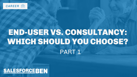 End-User vs. Consultancy: Which Should You Choose? Part One