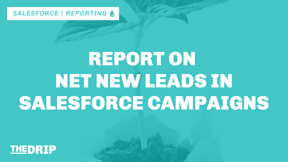 Report on Net New Leads in Salesforce Campaigns