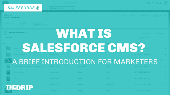 What is Salesforce CMS – A Brief Introduction for Marketers